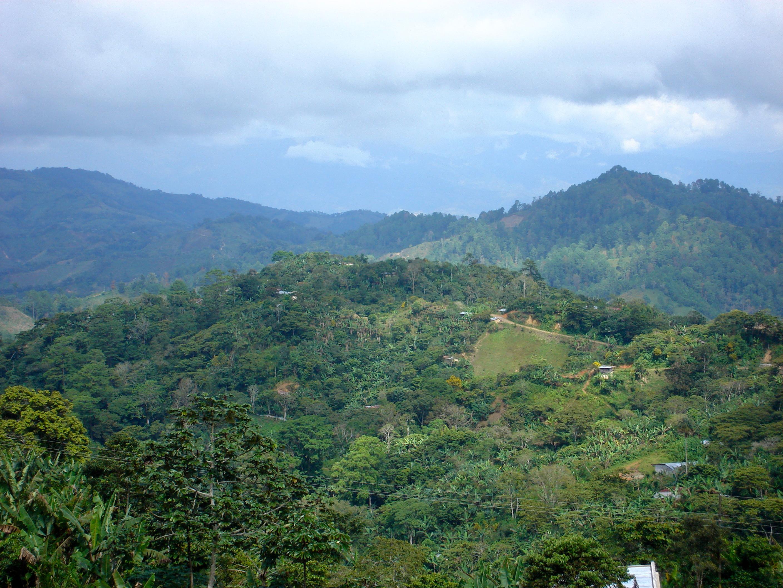 Landschaft-Lampocoy