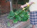 Gartenschaufel groß